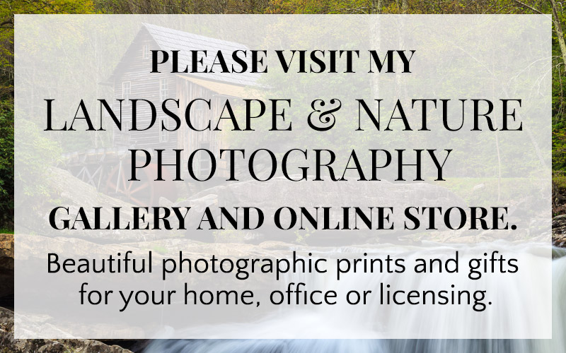 Please visit my Landscape & Nature Photography gallery and online store. Beautiful photographic prints and gifts for your home, office or licensing.